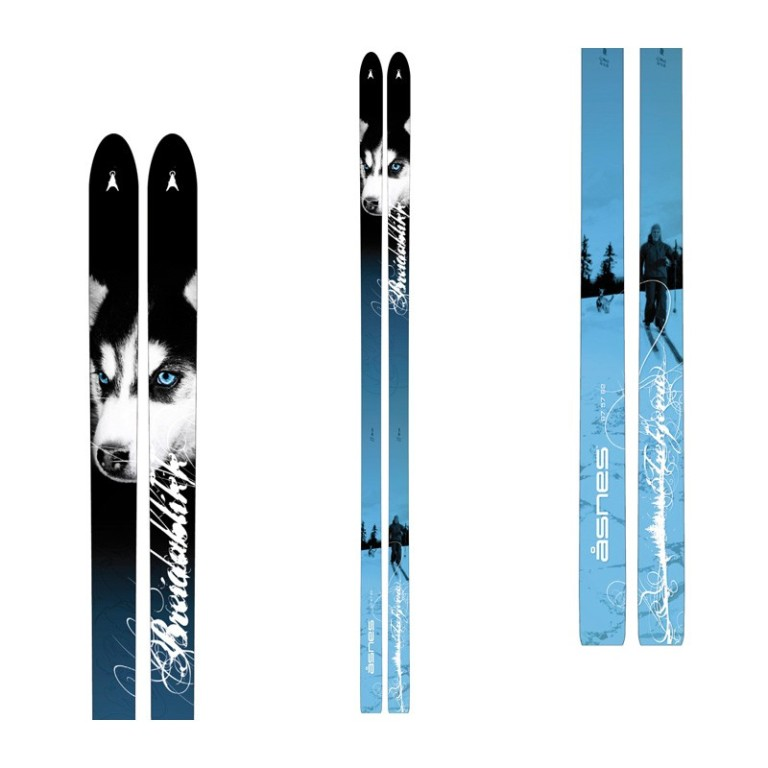 Dog_ski