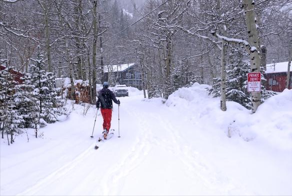 skidoor