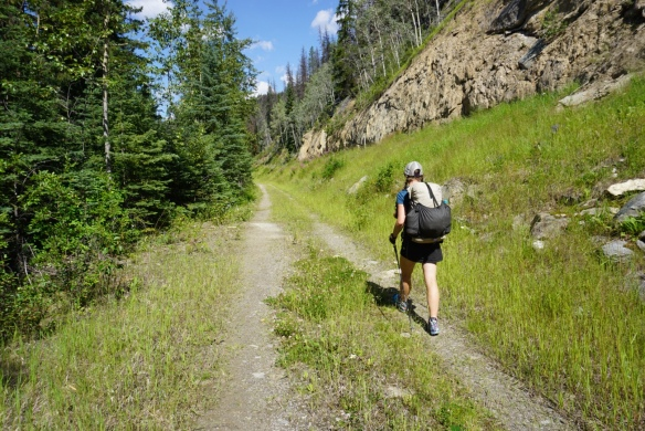 Underbrush In Owen Park Is So Dense Its >> Alta Backcountry Living And Playing In Wild Places
