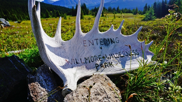 wildernesssign